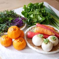 【お得な定期便】九州・天草で育った、福田果樹園の自然栽培野菜ボックス