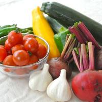 不調の時に食べたい。農薬、肥料不使用栽培 (北海道産)自然ファームハレトケの野菜ボックス