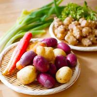 「種」からこだわった「京野菜」農薬・肥料不使用・固定種・自家採種中心 、86farm自然栽培野菜ボックス