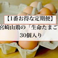 【1番お得な定期便】生命たまご30個