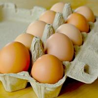 【お得セット】宮崎山鶏の「生命たまご」(有精卵)(30個)