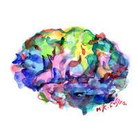 脳 〈brein〉