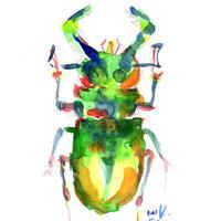 クワガタ〈stag beetle〉
