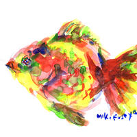 金魚〈Goldfish〉