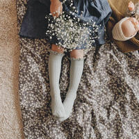 【collegien】 lace trim high socks