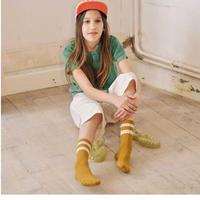 【collegien】Nico sport socks