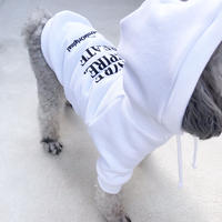ORIGINAL LOGO hoodie . [ white  XS , S , M ]