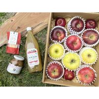 <数量限定>【園主のおまかせ】APPLE  MIX  3kg箱 (2品種以上のりんご詰め合わせ) & JAM / JUICE / APPLE TRIP SET《信州の大自然の恵み詰め合わせ》送料無料