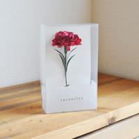mother's day paper flower / Carnation (Japan)