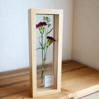 mother's day  pressed flowers / CARNATION