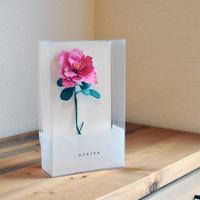 mother's day paper flower / Azalea (Italy)