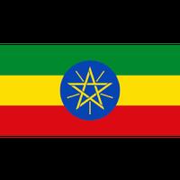 エチオピア イルガチェフェ G/3 200g 【中深煎り】
