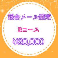 総合鑑定<Bコース>用¥20,000チケット