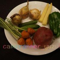 いろいろ野菜の写真