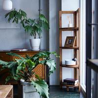 TROY CORNER SHELF L / ACME Furniture