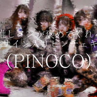 【PINOCO】推しメンがおかえりって待っててくれる的ピンチェキ【送料無料 / サイン入り】