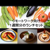 リモートワーク★1週間分のランチセット