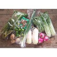 炭素循環野菜セット[クルンノウエン] made in 熊本県