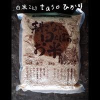 不耕起・無農薬・無化学肥料栽培 tasoひかり(コシヒカリ) 白米2kg[ファームガーデンたそがれ] made in 秋田県