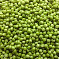 【数量限定】自然農グリーンピース500g  [BIG FAMILY FARM] made in 佐賀県