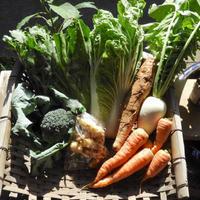 自然農野菜セット [BIG FAMILY FARM] made in 佐賀県