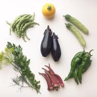 自然栽培野菜セットS [ソヤ畦畑] made in 岐阜県