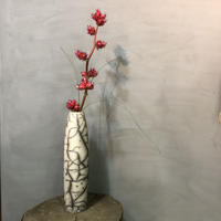 DOMANI selfoss 40  花器 植物鉢 plants pot 多肉植物 塊根植物 コーデックス 送料着払い