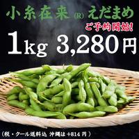 【ご予約開始!!】小糸在来(R)えだまめ 1kg