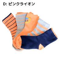 ピンクライオン Pink Lion Socks 5足セット 14-16/ 16-18/ 18-22cm