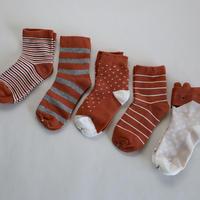 Brown Socks 5足セット 16-18/ 18-22cm