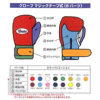 Winning Boxing gloves professional Velcro tape type Color order CO-MSB