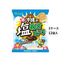 【ケース販売】ポテトチップス 沖縄の塩わさビーフ(1ケース:48g×12袋入)