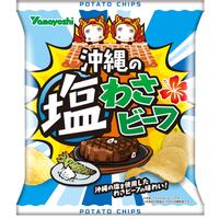 沖縄の塩わさビーフ 48g(1ケース:12袋入)