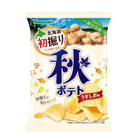 【袋販売】ポテトチップス 秋ポテト うすしお味 90g