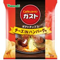 ガスト チーズINハンバーグ味 48g