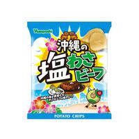 【袋販売】ポテトチップス 沖縄の塩わさビーフ 48g