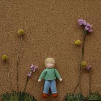Ambrosius dolls / boy