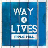 ミニアルバム【Way of lives】