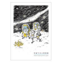 【NEW】宇宙ワカメ探索隊
