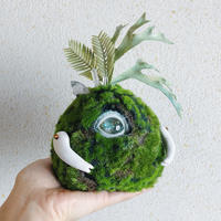 one eye moss ball / B