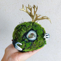 one eye  moss ball / C