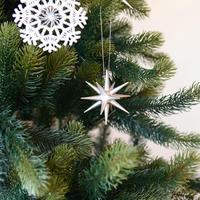 【クリスマス】オーナメント銀の星 (小)6個セット