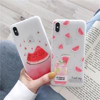 【N436】★ iPhone 6 / 6sPlus / 7 / 7Plus / 8 / 8Plus / X /XS /XR/Xs max★ シェルカバーケースWatermelon