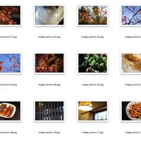 ブログ利用OKなフリー -写真素材60枚- 紅葉と食欲の秋セット アイキャッチ画像にぴったり