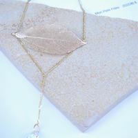 fossile leaf N