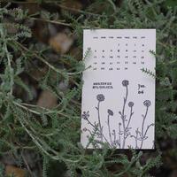 PAPYRUS|PAPYRUS Calendar 2022『De Historia Stirpium』
