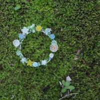 柳原麻衣|「花の輪・はらっぱ」 F55