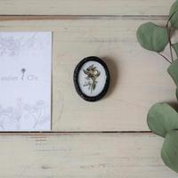 atelier Cl'e|botanical L