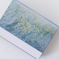 【9月号掲載分】岡崎直哉|POST CARD 100 no.03(限定作品)