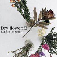 【5月号掲載分】Dryflower:f3|f3セレクション季節のお花6種